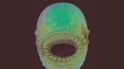 Iata cum arata cel mai vechi strămoș al omului descoperit de o echipă internațională de cercetători